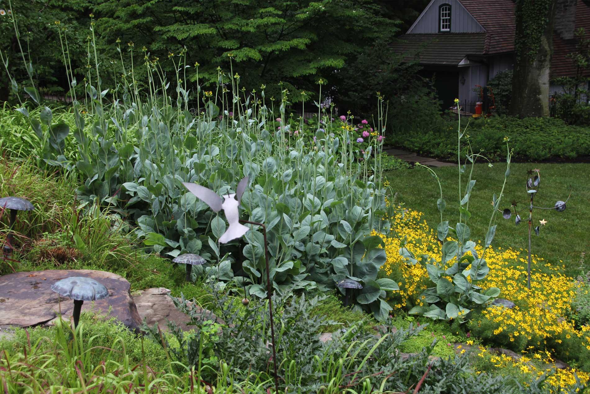 Ardmore Garden Garden Ftempo